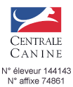 Centrale Canine